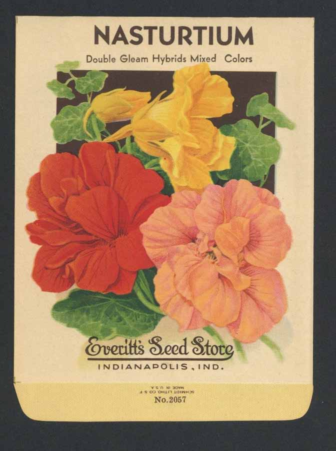Nasturtium Antique Everitt's Seed Pack, Double Gleam
