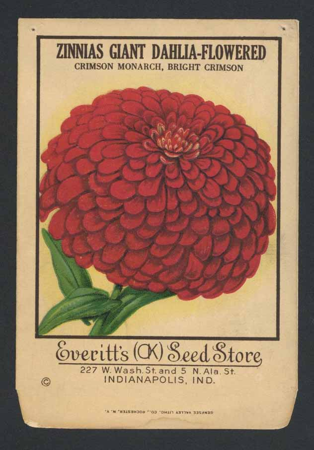 Zinnias Antique Everitt's Seed Pack, Crimson Monarch