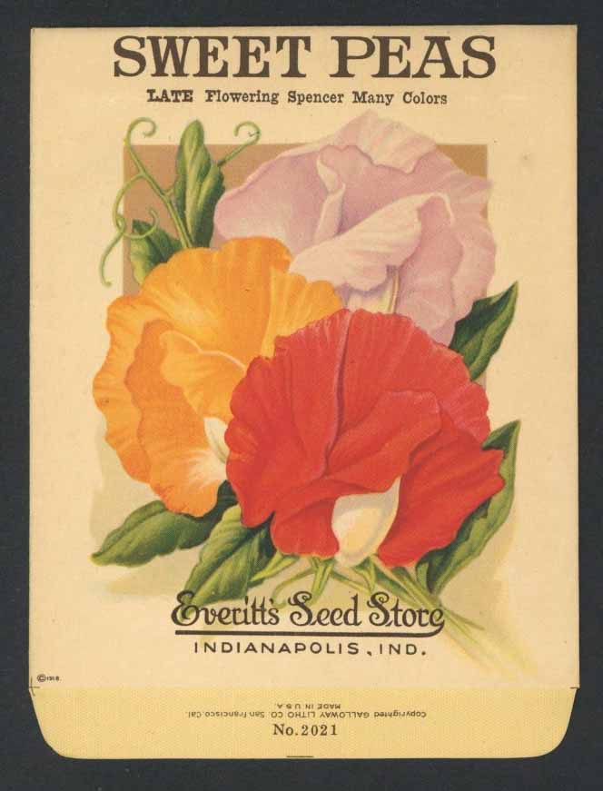 Sweet Peas Antique Everitt's Seed Pack, Spencer Many Colors