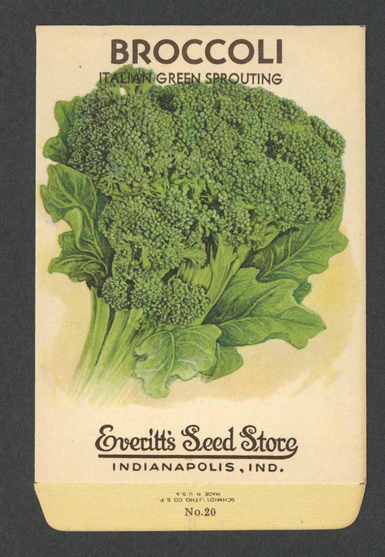 Broccoli Vintage Everitt's Seed Packet, Italian Green Sprouting