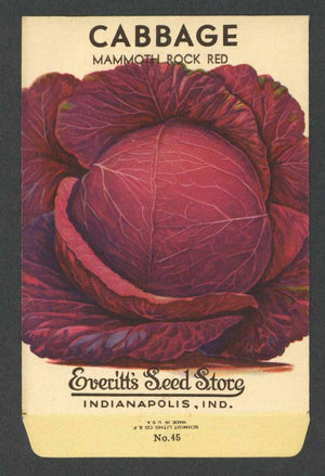 Cabbage Vintage Everitt's Seed Packet, Mammoth Rock Red