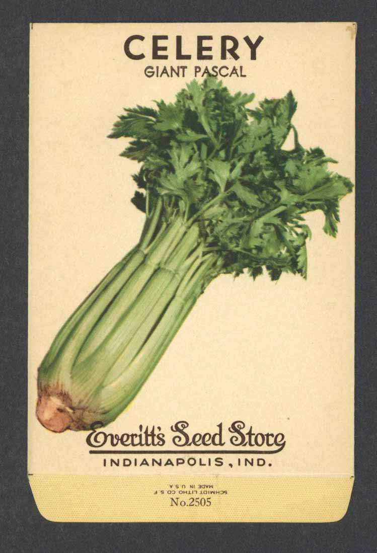 Celery Vintage Everitt's Seed Packet, Giant Pascal