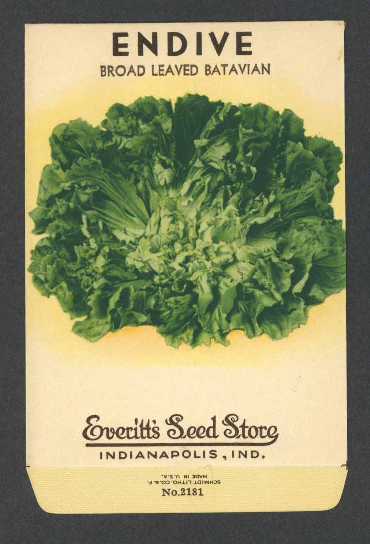 Endive Vintage Everitt's Seed Packet, Broad Leaved Batavian