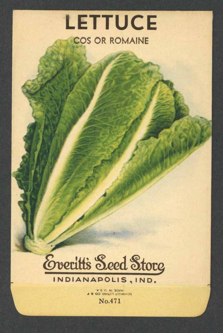 Lettuce Vintage Everitt's Seed Packet, Cos or Romaine