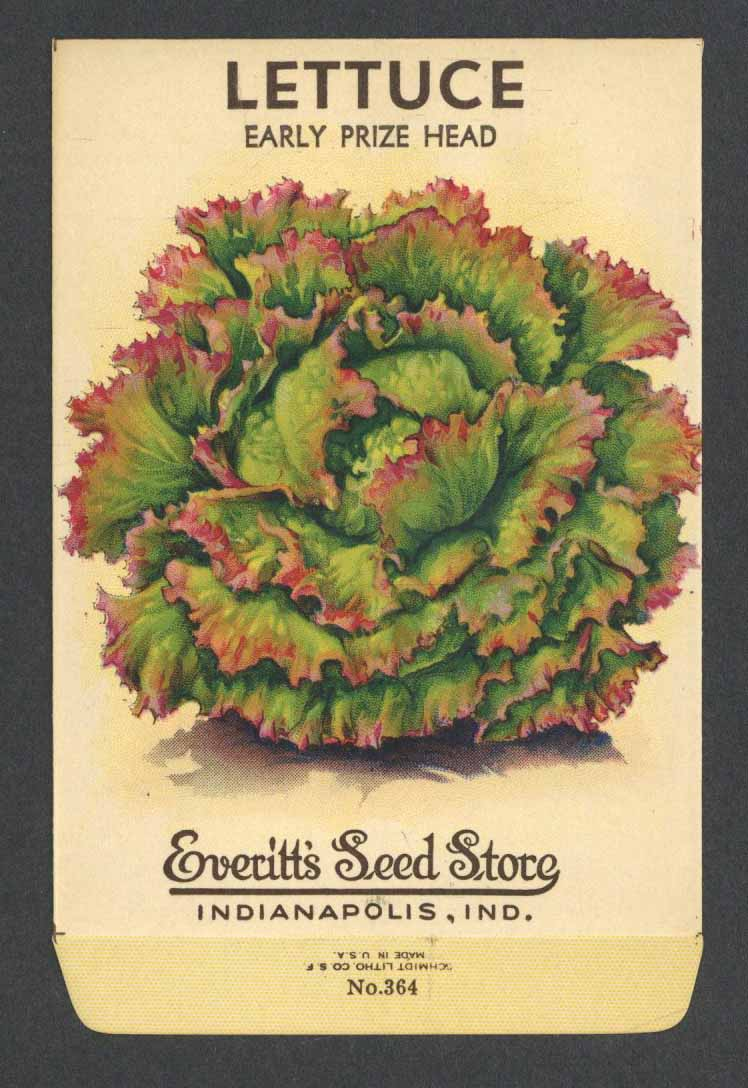 Lettuce Vintage Everitt's Seed Packet, Early Prize Head