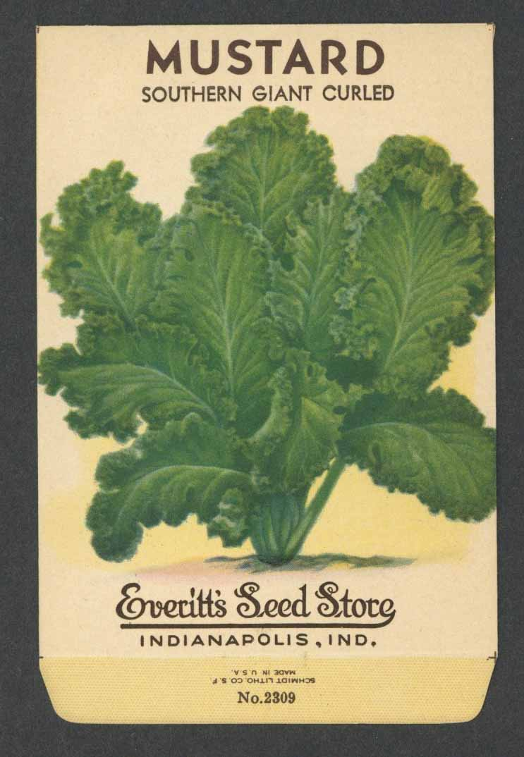 Mustard Vintage Everitt's Seed Packet, Southern Giant Curled