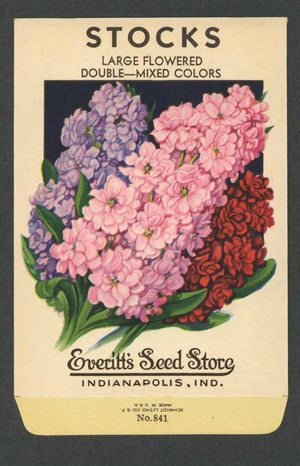 Stocks Vintage Everitt's Seed Packet, Large Flowered