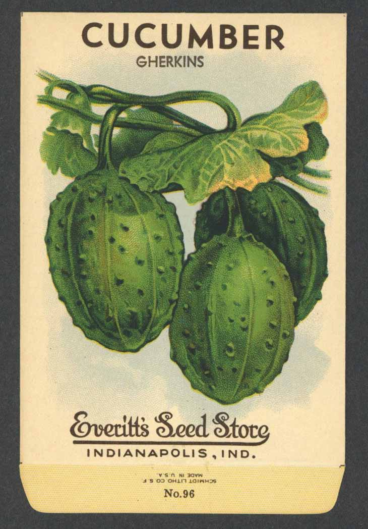 Cucumber Antique Everitt's Seed Packet, Gherkins