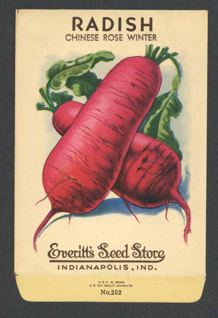 Radish Antique Everitt's Seed Packet, Chinese Rose Winter
