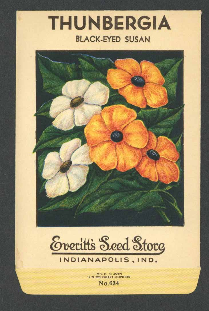 Thunbergia Antique Everitt's Seed Packet, Black Eyed Susan