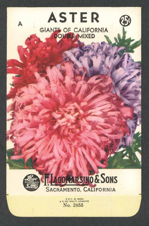 Aster Vintage Lagomarsino Seed Packet, Giants of California