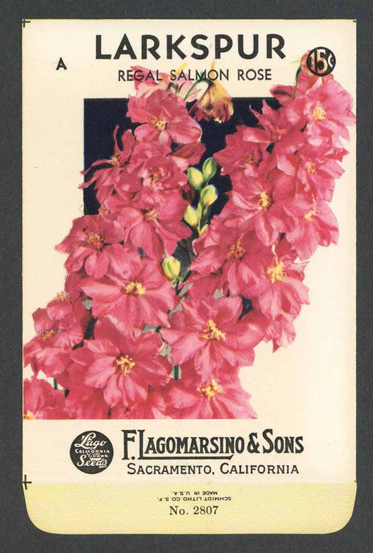 Larkspur Vintage Lagomarsino Seed Packet, Regal Salmon Rose