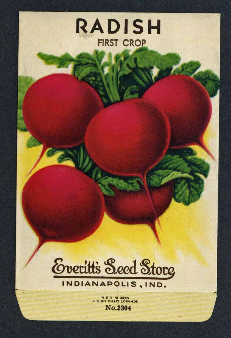 Radish Vintage Everitt's Seed Packet, First Crop