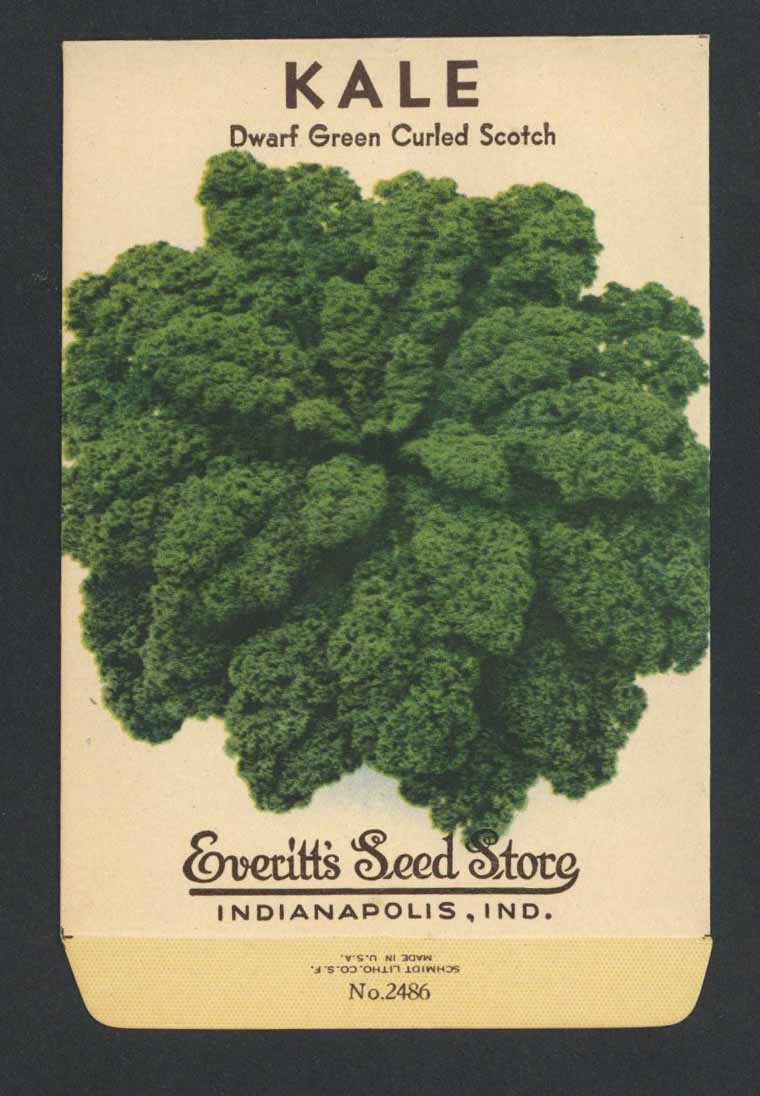 Kale Vintage Everitt's Seed Packet, Curled Scotch