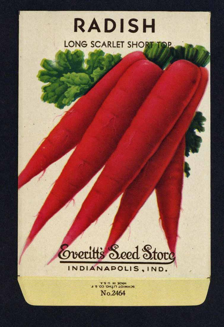 Radish Vintage Everitt's Seed Packet, Long Scarlet