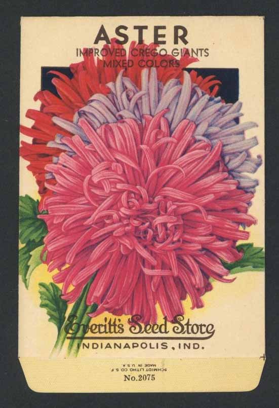 Aster Vintage Everitt's Seed Packet, Mixed Colors
