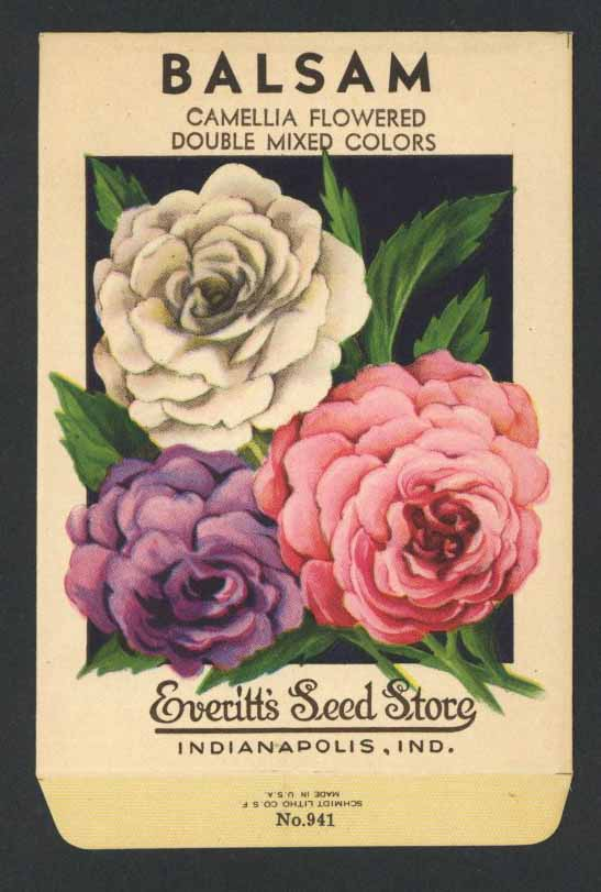 Balsam Vintage Everitt's Seed Packet