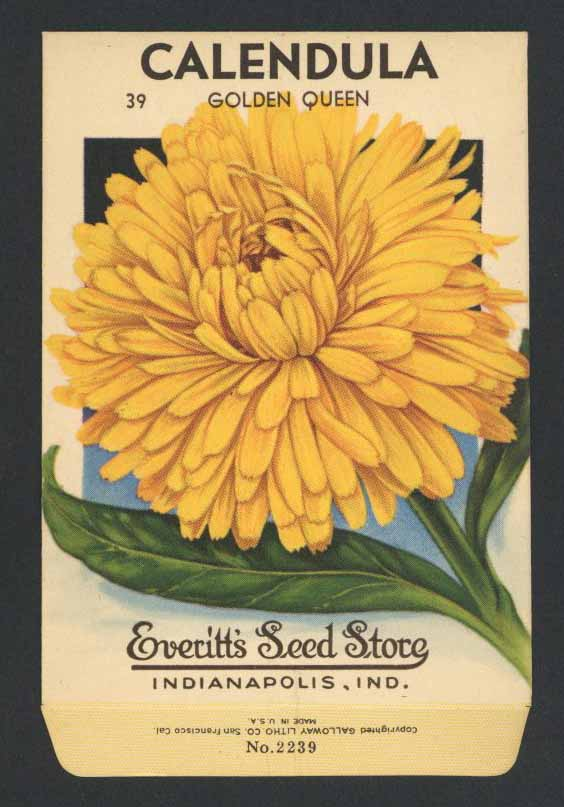 Calendula Vintage Everitt's Seed Packet, Golden Queen