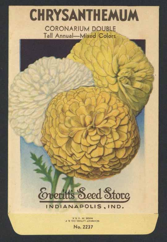 Chrysanthemum Vintage Everitt's Seed Packet