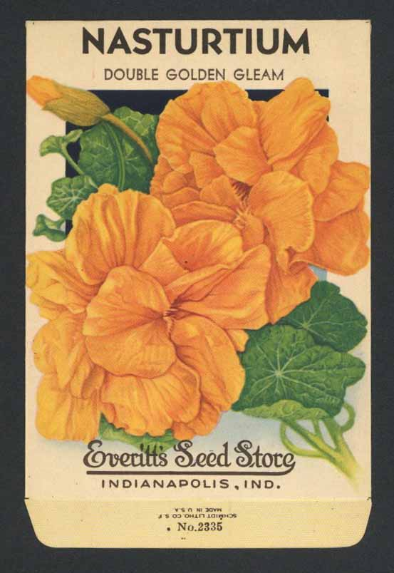 Nasturtium Vintage Everitt's Seed Packet, Golden Gleam