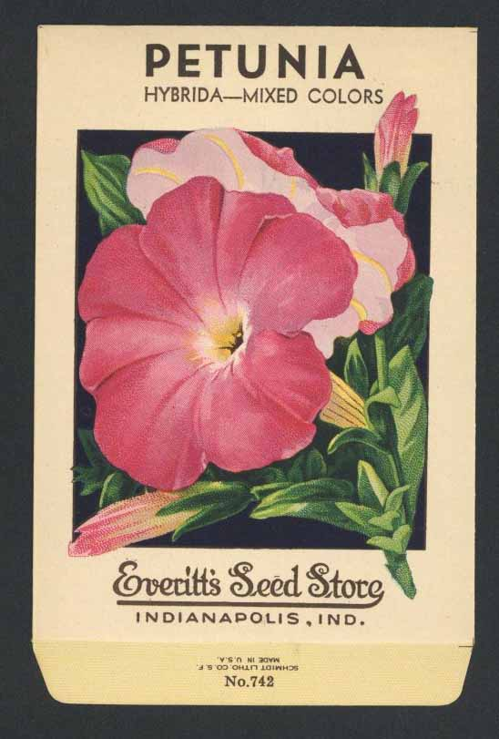 Petunia Vintage Everitt's Seed Packet, Mixed Colors
