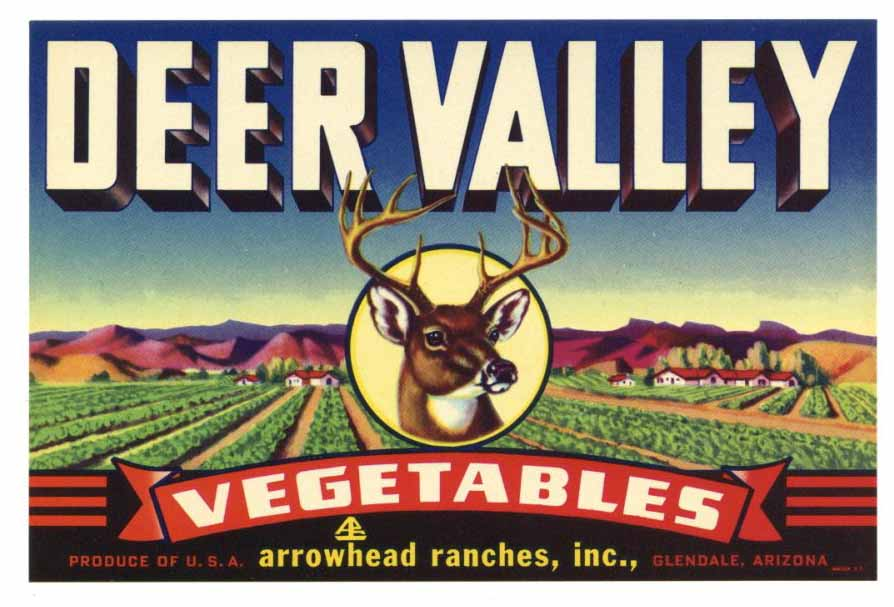Deer Valley Brand Vintage Arizona Produce Crate Label, s
