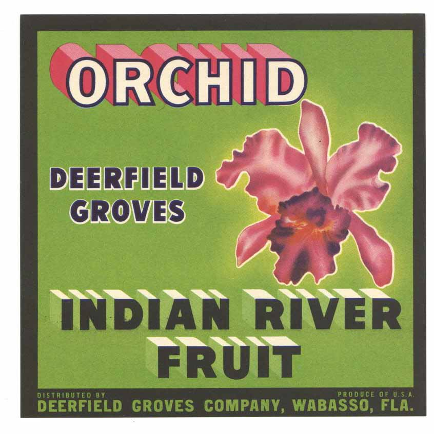 Orchid Brand Vintage Wabasso Florida Citrus Crate Label small