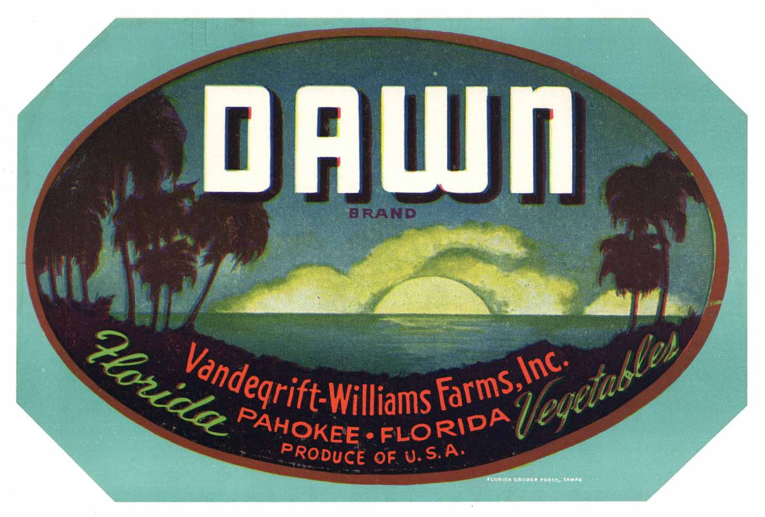 Dawn Brand Vintage Pahokee Florida Vegetable Crate Label