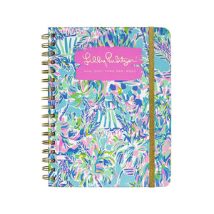 17 Month Monthly Planner