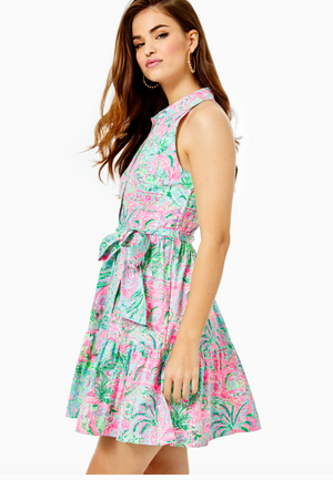 Trisha Stretch Shirtdress
