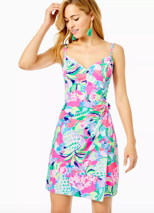 Scarlet Stretch Dress