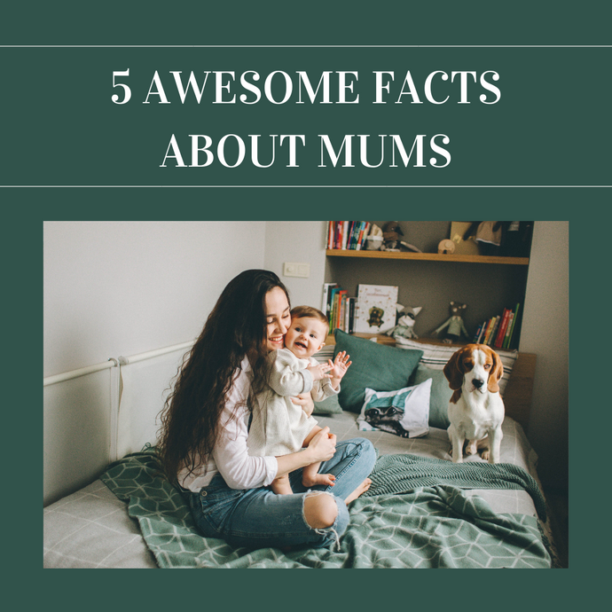 5 Awesome Facts About Mums