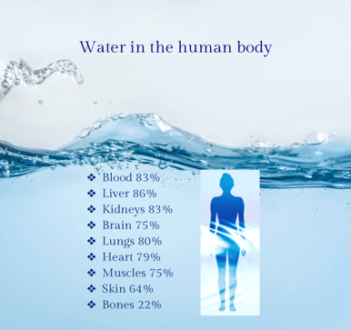 Water to keep hydrated - Nutrition Tips for Expectant Mums - NINE+QUARTER Maternity & Breastfeeding Blog
