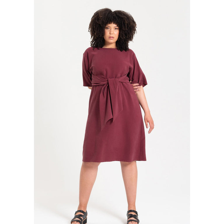 Radian Dress with Sleeve