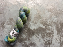 Load image into Gallery viewer, Jurassic Coast - Merino Silk - 4ply
