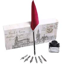 Writing Quill Dip Pen Calligraphy Pen Set with 6 Stainless Steel Nibs and Ink for Stationery Gift PA-47