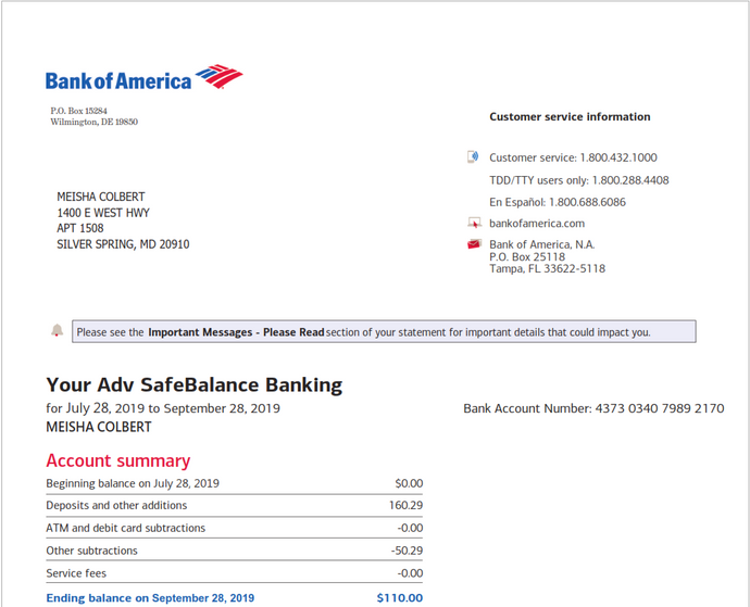 USA - Bank of America BOA Bank Statement 2019 - PDF file