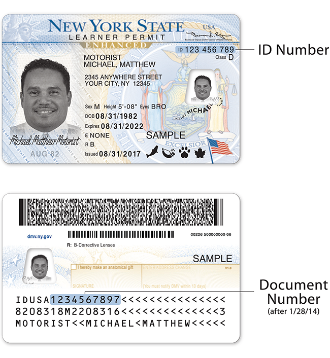 NEWYORK DRIVER LICENSE PSD file ( Photoshop /Template)
