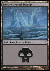 Snow-Covered Swamp