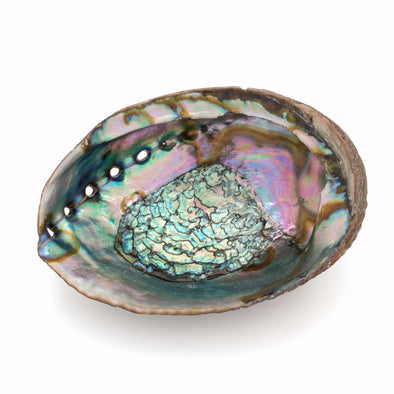 Iridescent Abalone Shell, Jewelry & Trinket Dish, Natural Home Decor