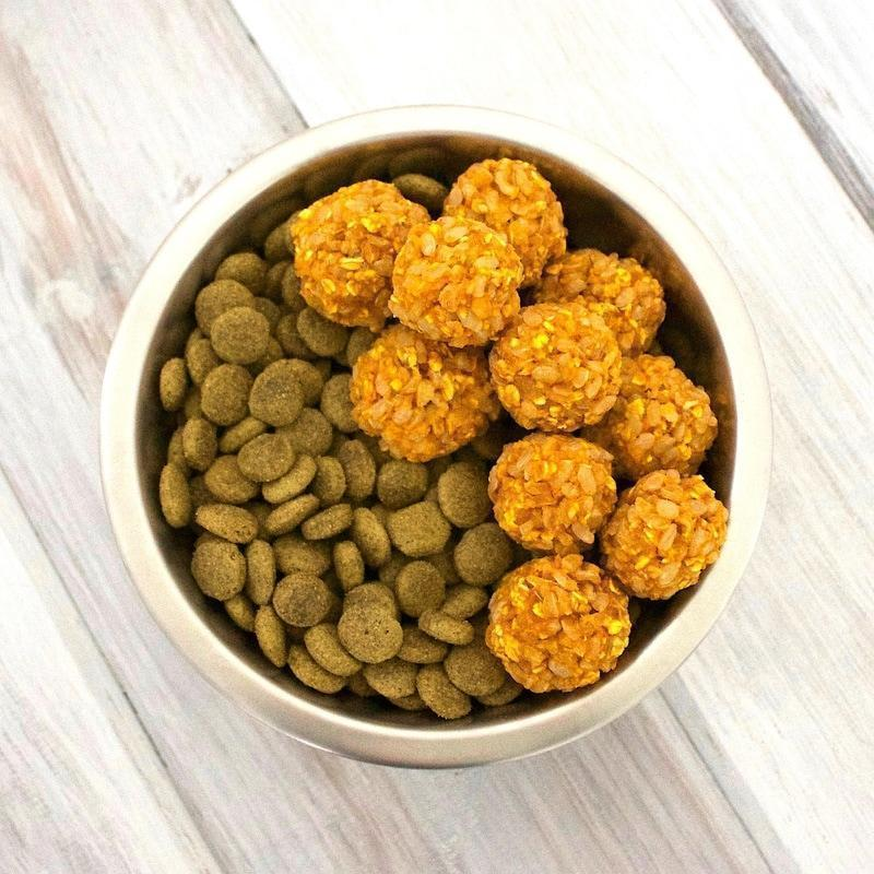 articles/crunchy-pumpkin-rice-n-oat-bites-homemade-dog-food-vegan-gluten-free_orig_d0986e62-acc5-41ff-bee2-fcd8c57fcb36.jpg