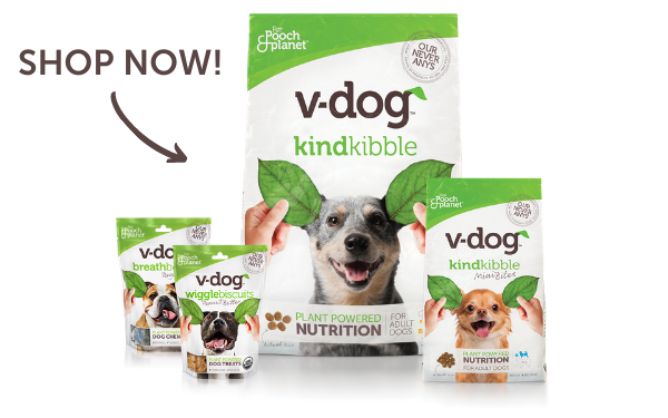 shop all v-dog products