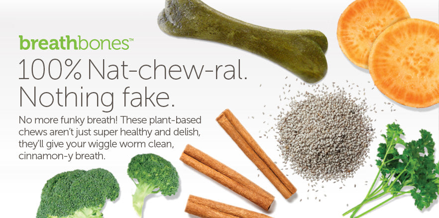 Breathbones: 100% Nat-chew-ral. Nothing fake. No more funky breath. These plant-based chews aren't just super healthy and delish, they'll give your wiggle worm clean, cinnamon-y breath.