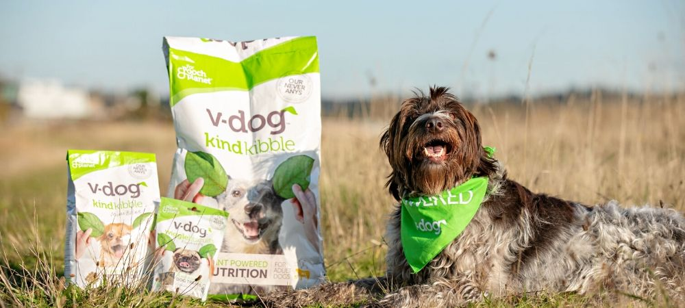 Dog in field with v-dog kibble and treats