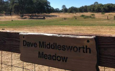 Dave Middlesworth  Meadow pasture signage