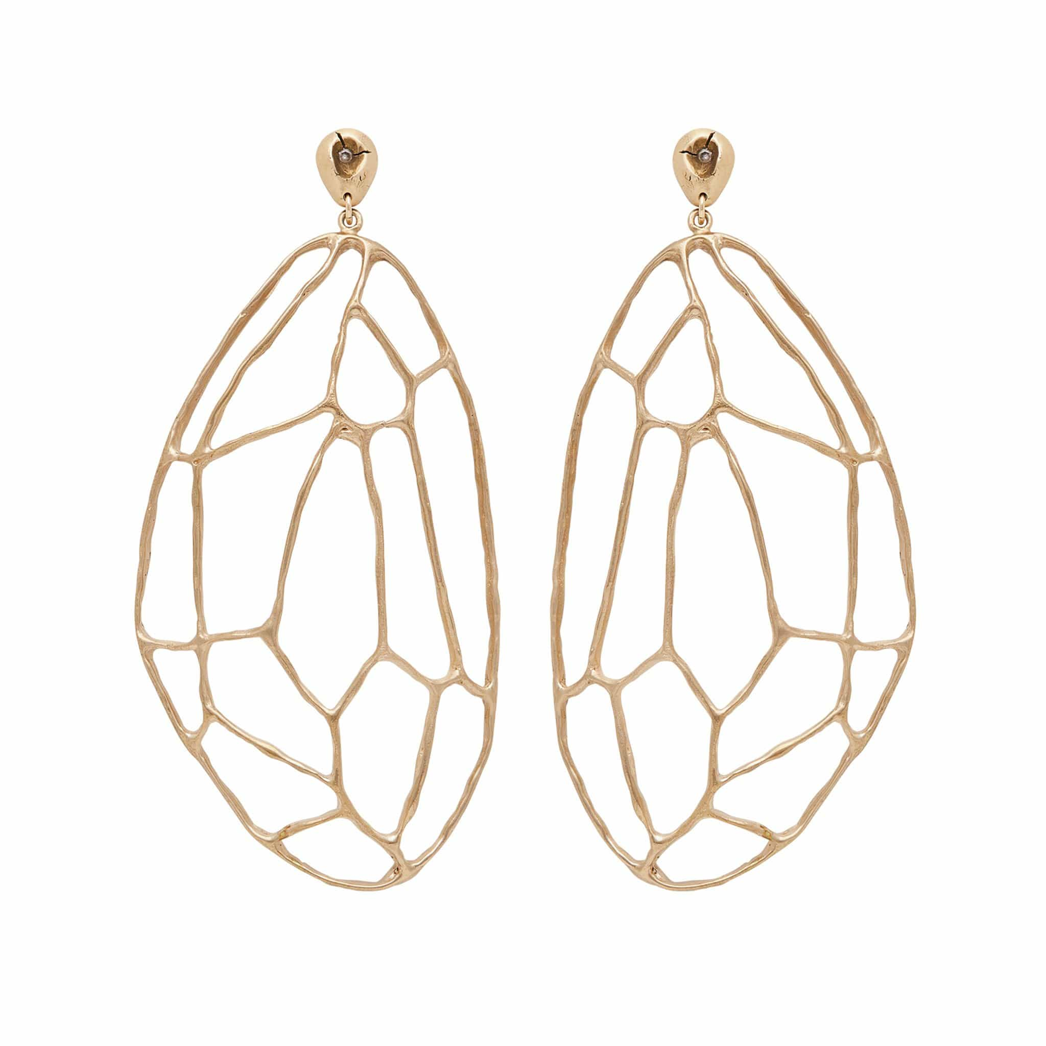 Tortoise Bronze Earring - Julie Cohn Design