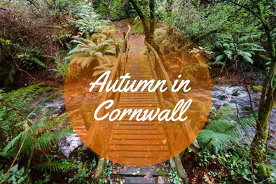 What to do in Cornwall Autumn Half Term 2018