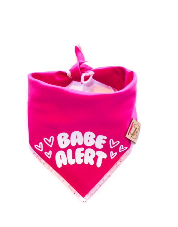 Babe Alert Valentines Day Dog Bandana made by Royal Collections and Co.