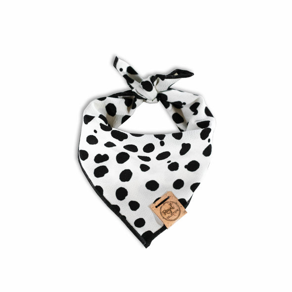 Dots for Days Dog Bandana made by Royal Collections and Co.