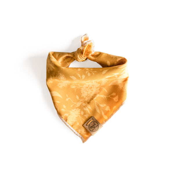 Harvest Dog Bandana made by Royal Collections and Co.